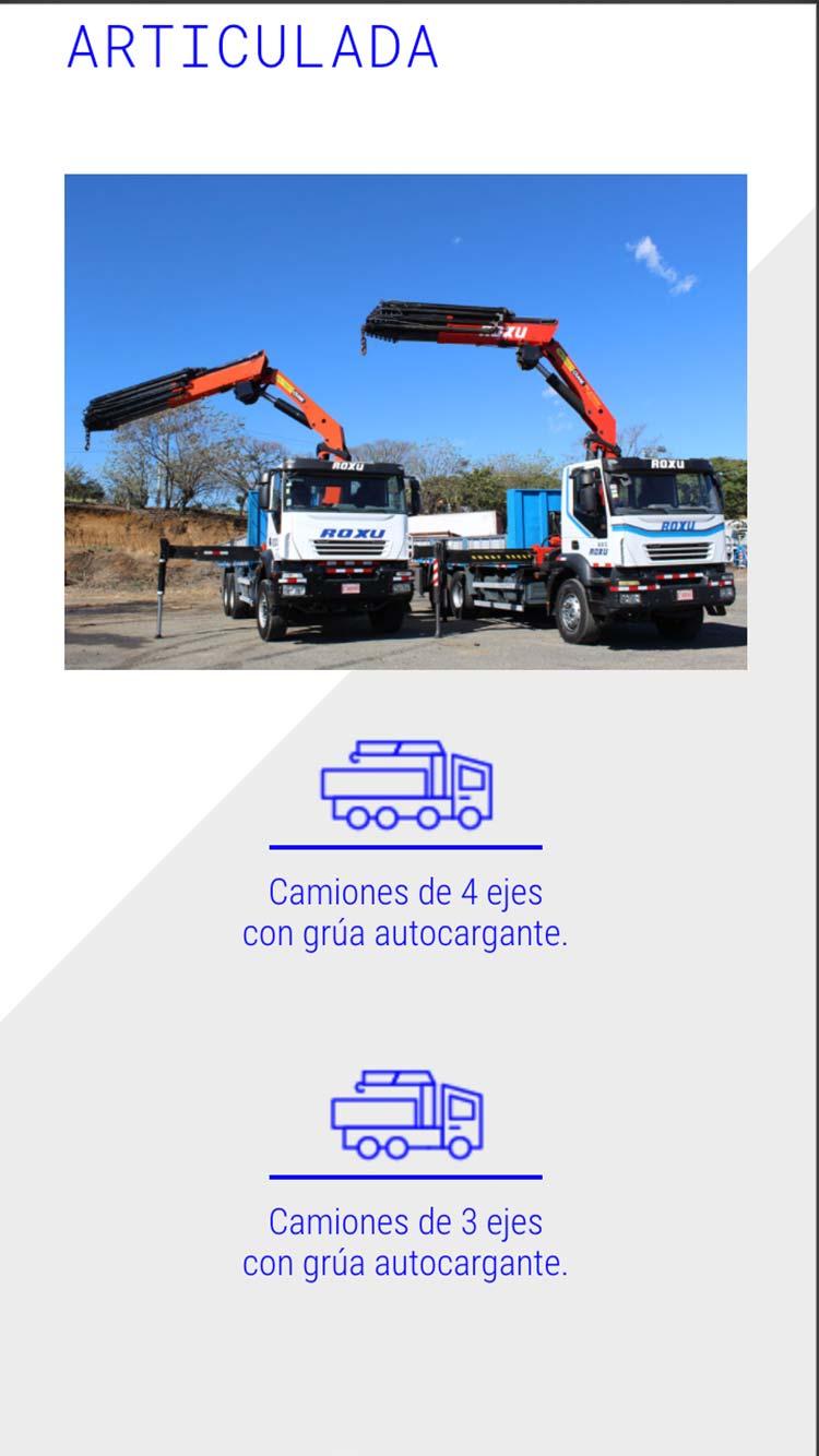 Grupo Roxu. Branding. Diseño web mobile 02